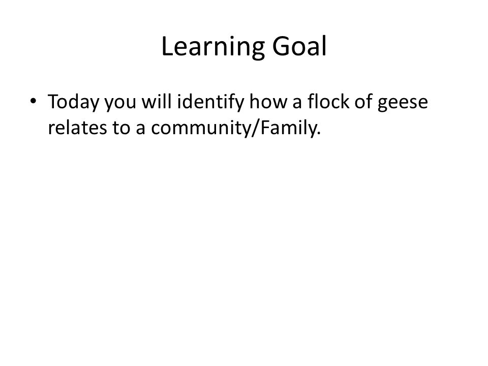 Learning Goal Today you will identify how a flock of geese relates to a community/Family.