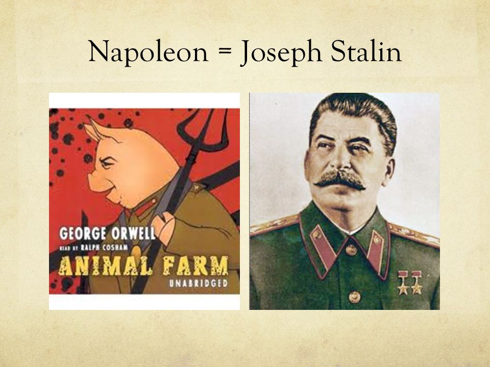 a comparison of stalin and napoleon and the development of allegory in animal farm by george orwell George orwell presents direct parallels between the two autocratic figures  3)  had very limited contribution to the russian revolution in comparison to lenin  and trotsky  5) like stalin, napoleon attempts to form totalitarian regime on the  farm  tyrannical soviet dictator joseph stalin with the allegorical image of a pig.