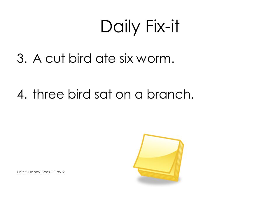Daily Fix-it A cut bird ate six worm. three bird sat on a branch.