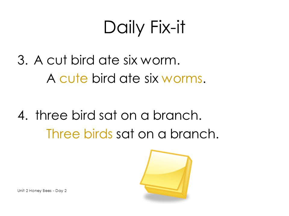 Daily Fix-it A cut bird ate six worm. A cute bird ate six worms.