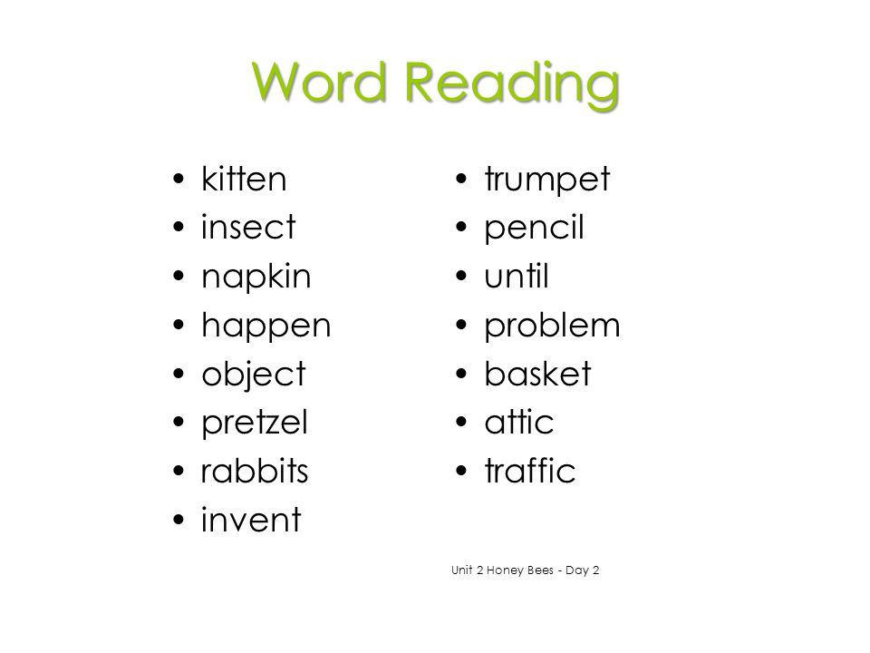 Word Reading kitten insect napkin happen object pretzel rabbits invent