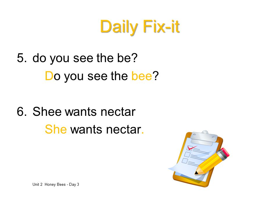 Daily Fix-it do you see the be Do you see the bee Shee wants nectar