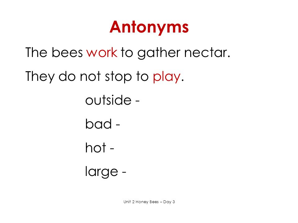 Antonyms The bees work to gather nectar. They do not stop to play.
