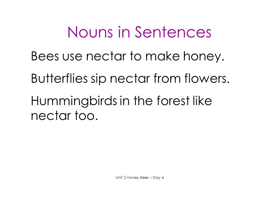 Nouns in Sentences Bees use nectar to make honey.