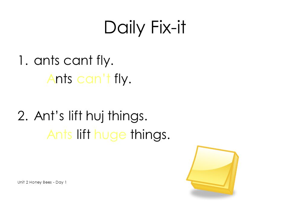 Daily Fix-it ants cant fly. Ants can't fly. Ant's lift huj things.