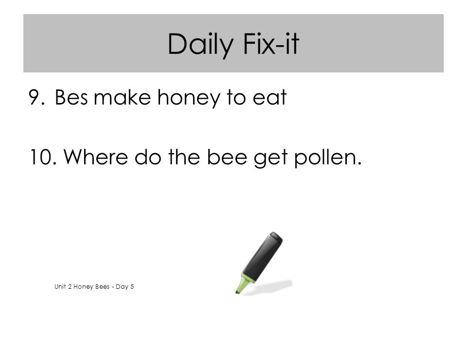 Daily Fix-it Bes make honey to eat Where do the bee get pollen.