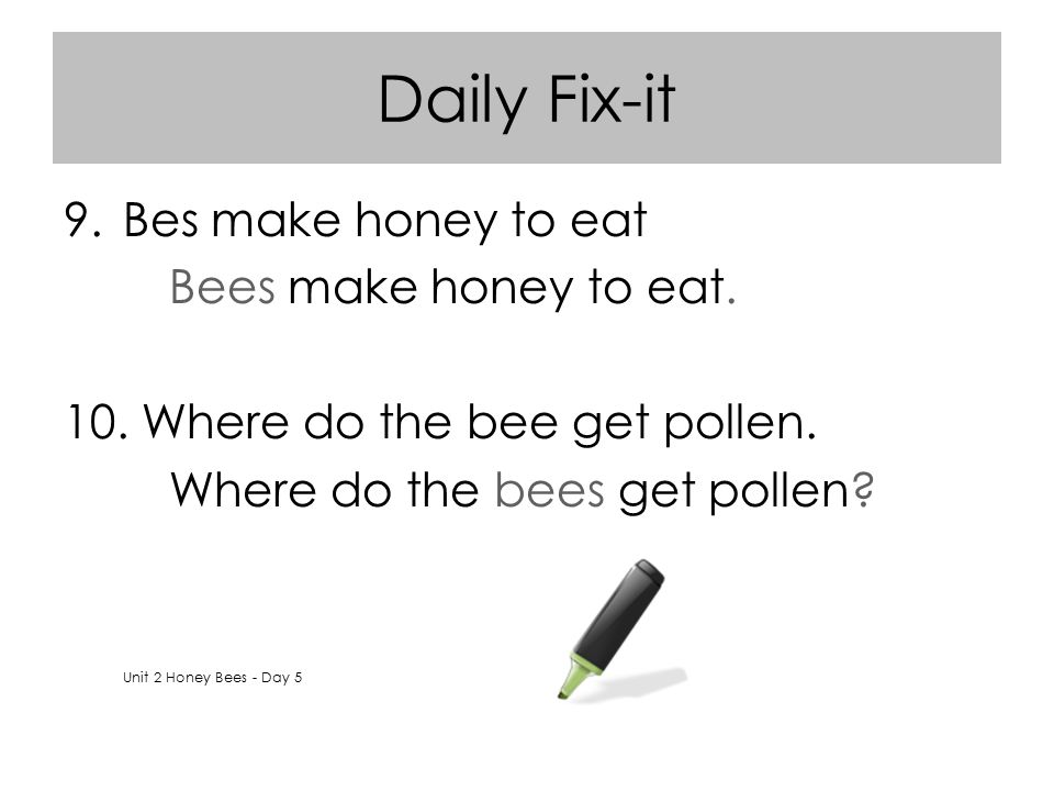 Daily Fix-it Bes make honey to eat Bees make honey to eat.