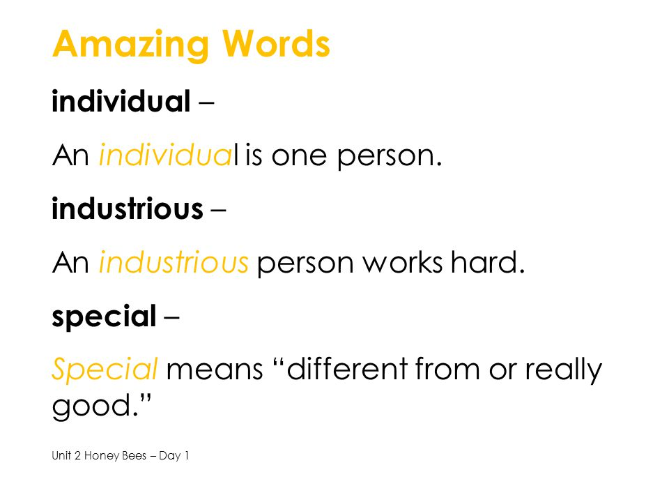 Amazing Words individual – An individual is one person. industrious –