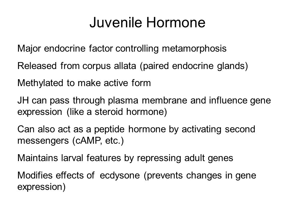Juvenile Hormone Major endocrine factor controlling metamorphosis