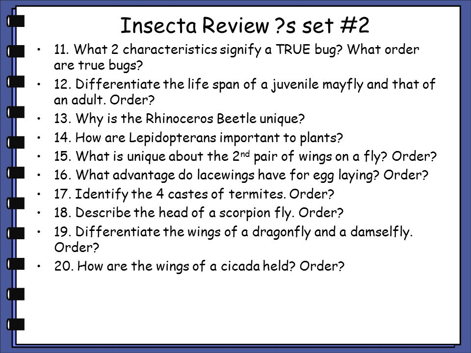 Insecta Review s set #2 11. What 2 characteristics signify a TRUE bug What order are true bugs