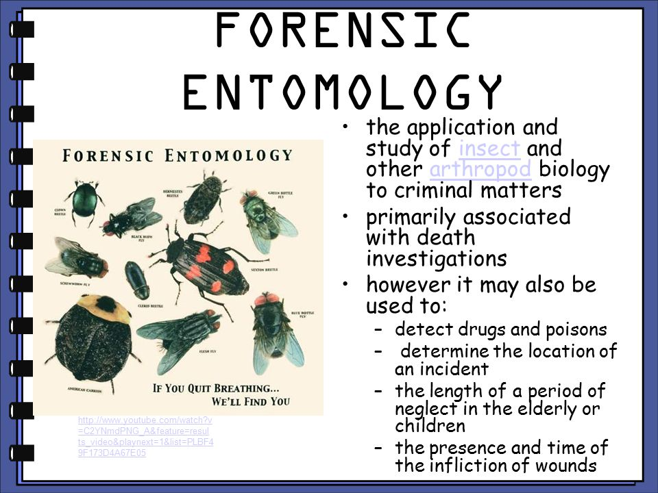 FORENSIC ENTOMOLOGY the application and study of insect and other arthropod biology to criminal matters.