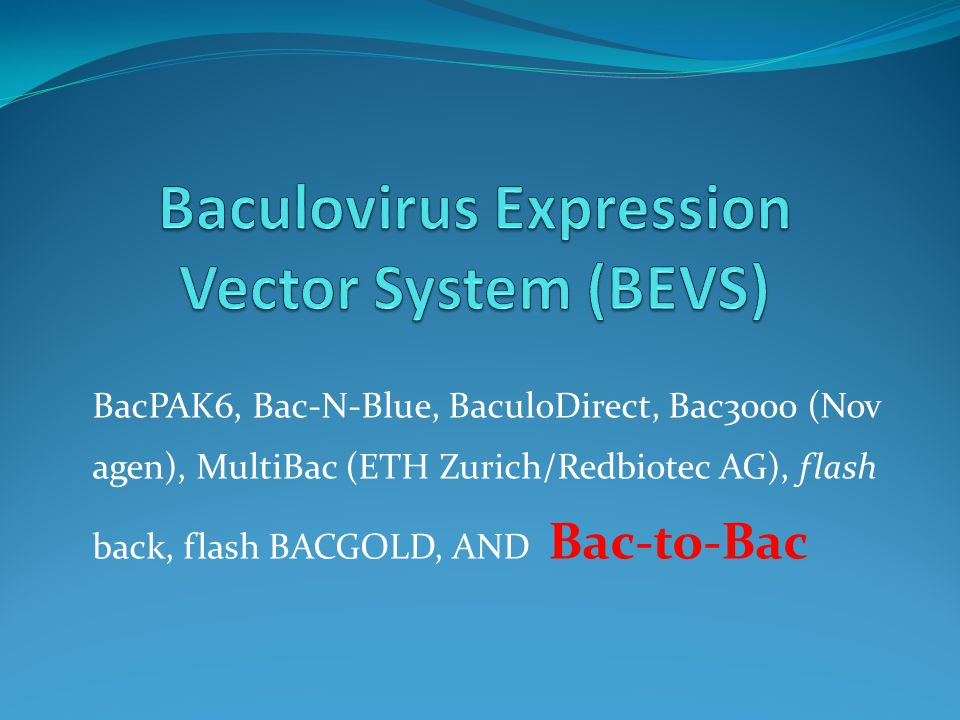Baculovirus Expression Vector System (BEVS)