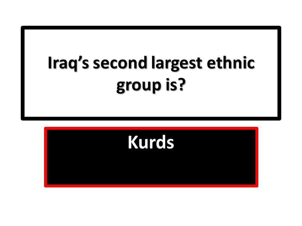 Iraq's second largest ethnic group is