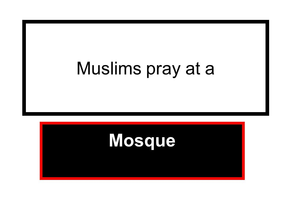 Muslims pray at a Mosque