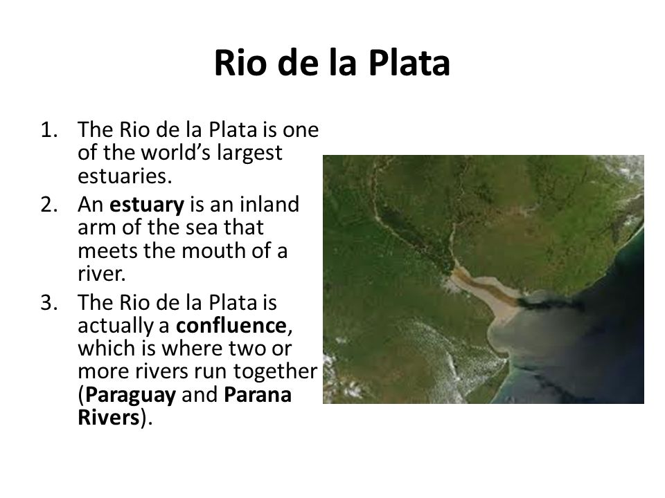 Rio de la Plata The Rio de la Plata is one of the world's largest estuaries. An estuary is an inland arm of the sea that meets the mouth of a river.