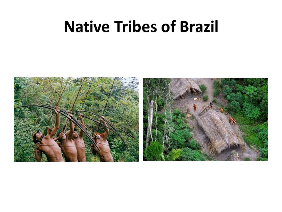 Native Tribes of Brazil