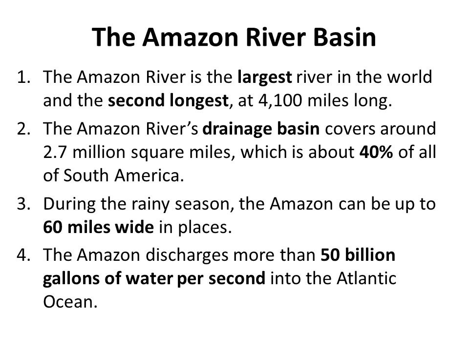 The Amazon River Basin The Amazon River is the largest river in the world and the second longest, at 4,100 miles long.