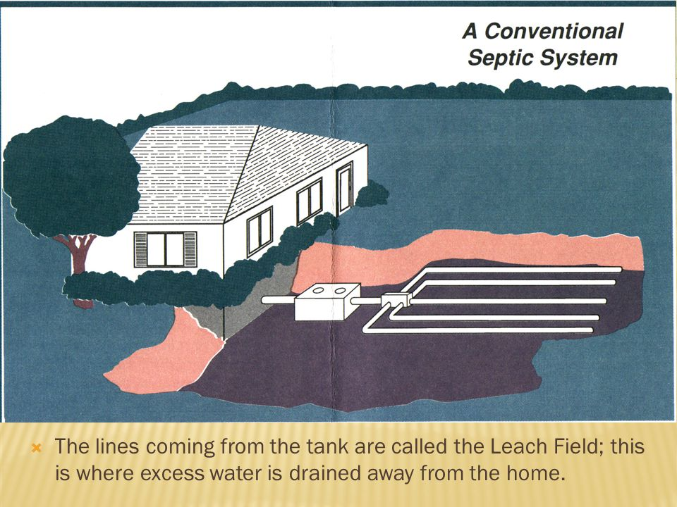The lines coming from the tank are called the Leach Field; this is where excess water is drained away from the home.