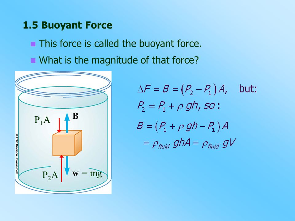 1.5 Buoyant Force This force is called the buoyant force. What is the magnitude of that force P1A.