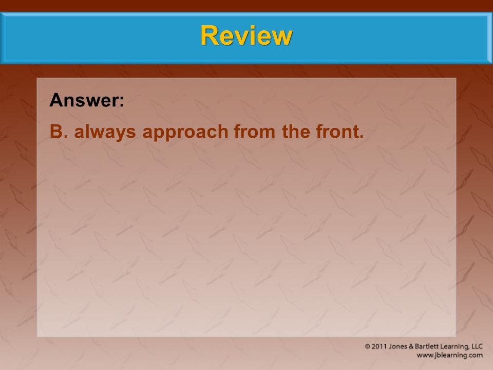 Review Answer: B. always approach from the front.
