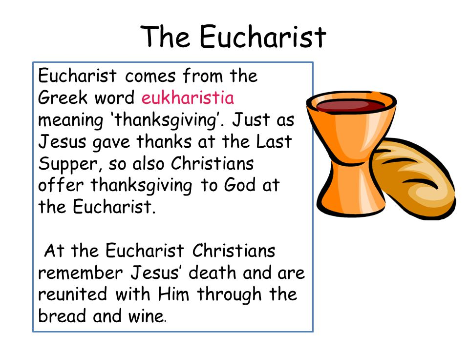 importance of eucharist in the catholic Beliefs and practices  indeed, the importance of the ascension of christ in his flesh was  the roman catholic church distinguishes the eucharist as.