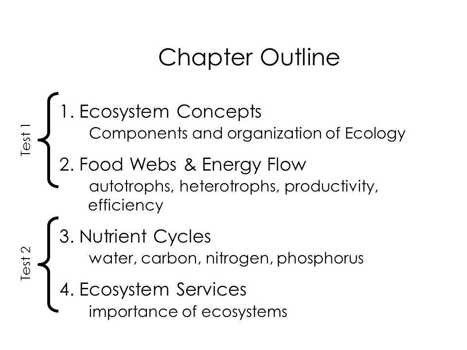 ecosystem components paper Components of an ecosystem you are already familiar with the parts of an ecosystem from this course and from general knowledge.