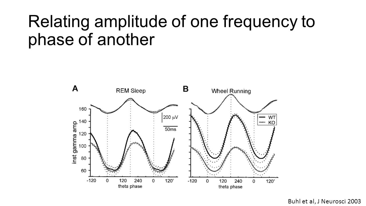 Relating amplitude of one frequency to phase of another