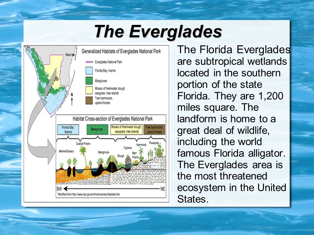 Floridas Landforms Ppt Video Online Download - Is florida part of the united states