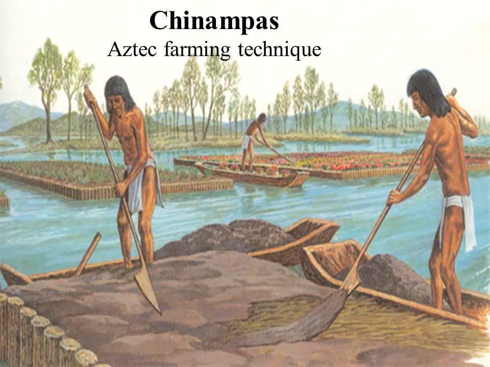 Aztec farming technique