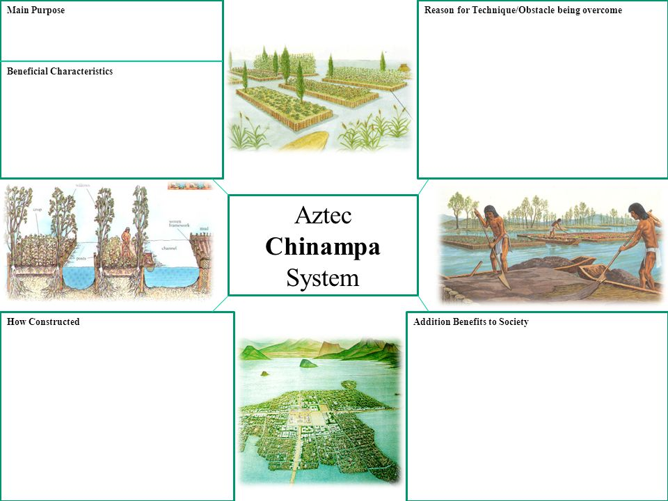 Aztec Chinampa System Main Purpose