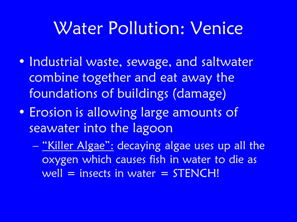 Water Pollution: Venice