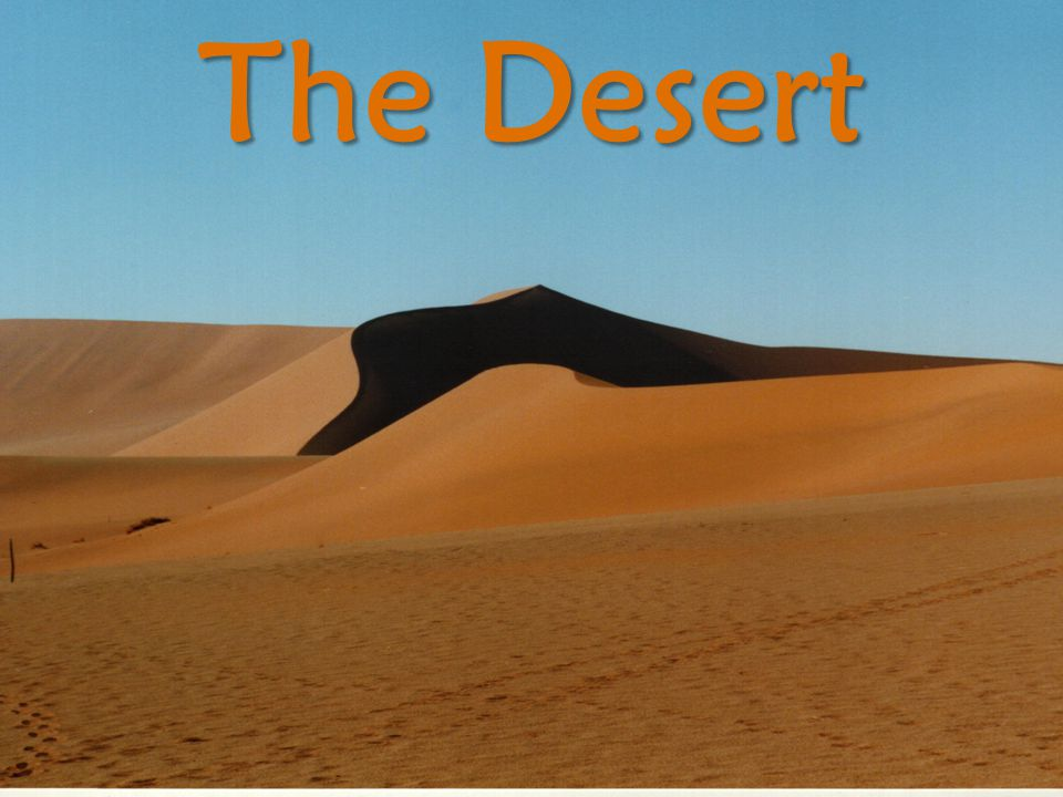 Geography of the arabian peninsula ppt video online download 3 the desert sciox Images