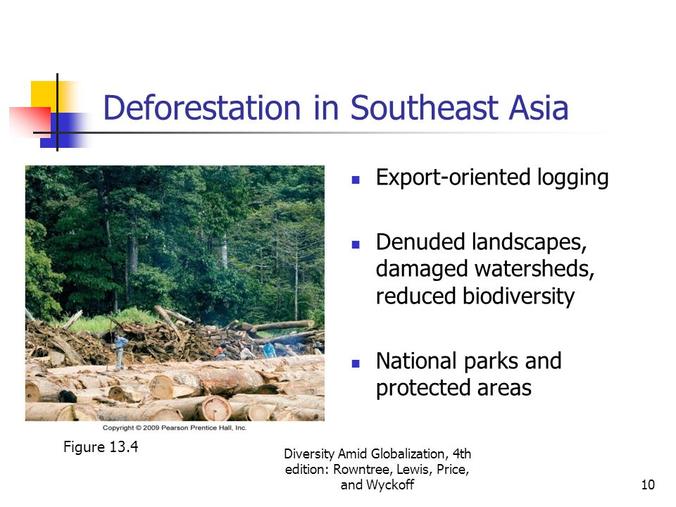 deforestation of southeast asia Southeast asian deforestation rates and agricultural conversion we analysed deforestation rates in insular southeast asia over the insular southeast asia.