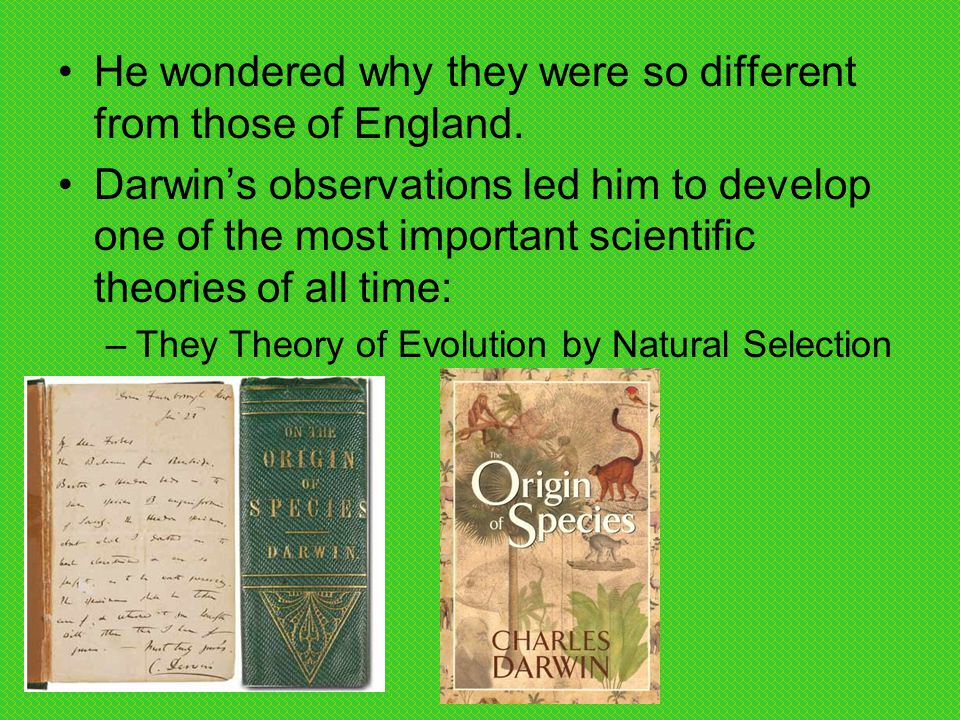 Why Are Evolution And Natural Selection Different