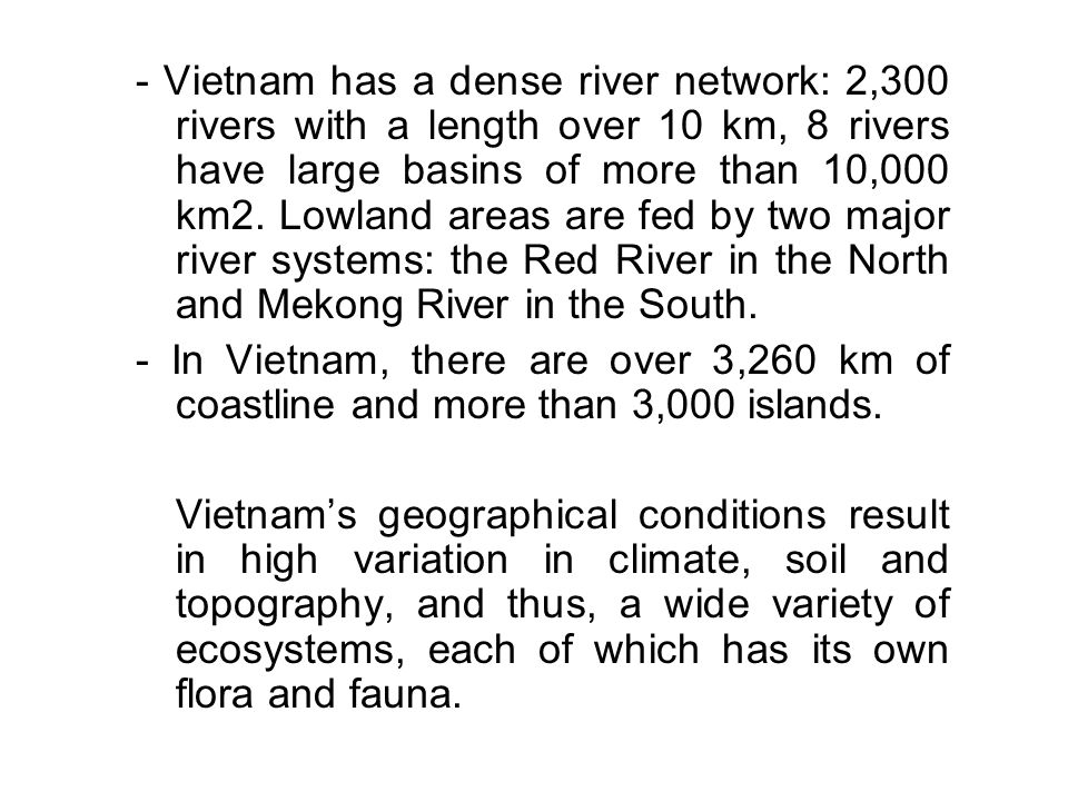 - Vietnam has a dense river network: 2,300 rivers with a length over 10 km, 8 rivers have large basins of more than 10,000 km2. Lowland areas are fed by two major river systems: the Red River in the North and Mekong River in the South.