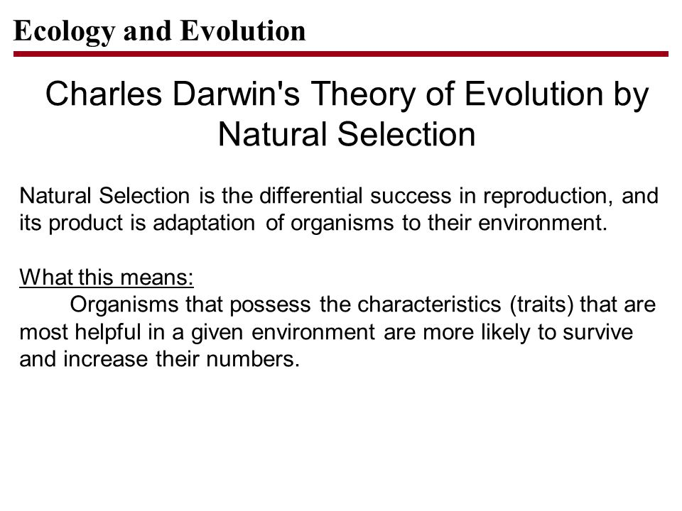 charles darwins theory of evolution New research into charles darwin's theory of evolution read science articles on mutations, natural selection and how new species appear photos.