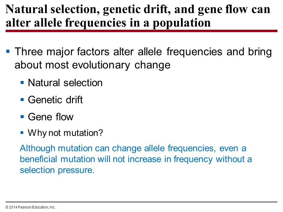 Types Of Natural Selection Ppt