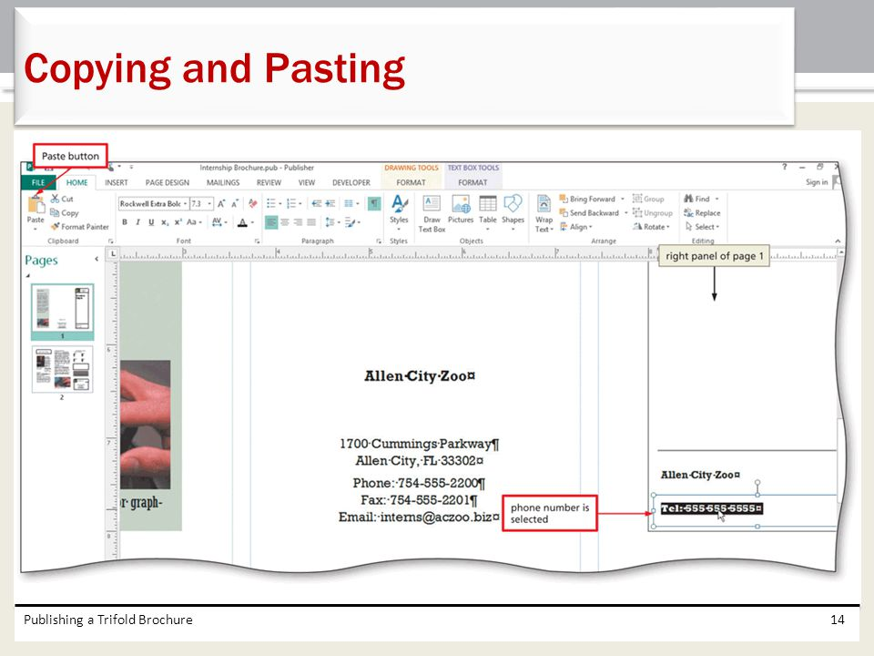 Copying and Pasting Publishing a Trifold Brochure