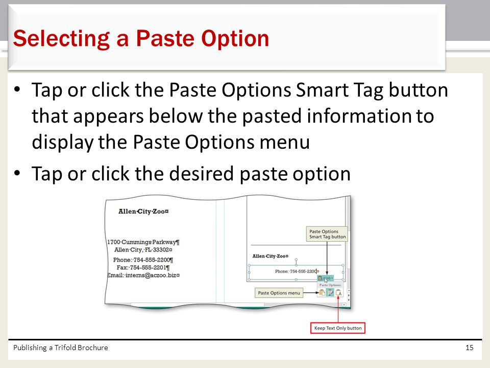 Selecting a Paste Option
