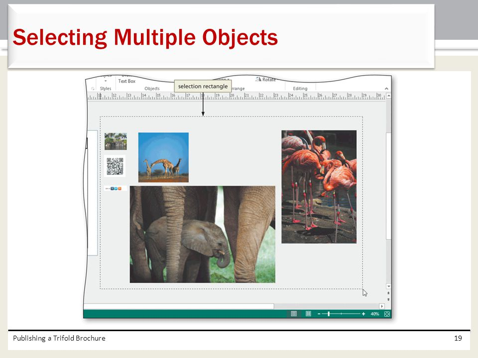 Selecting Multiple Objects