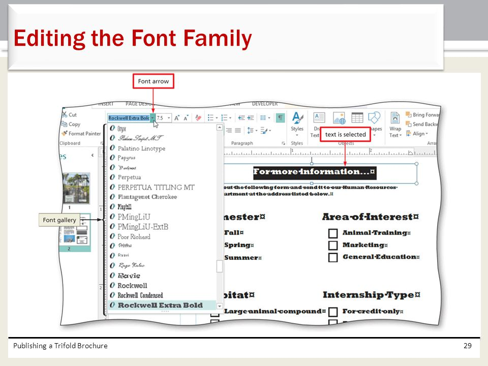 Editing the Font Family
