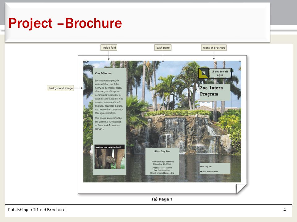 Project –Brochure Publishing a Trifold Brochure