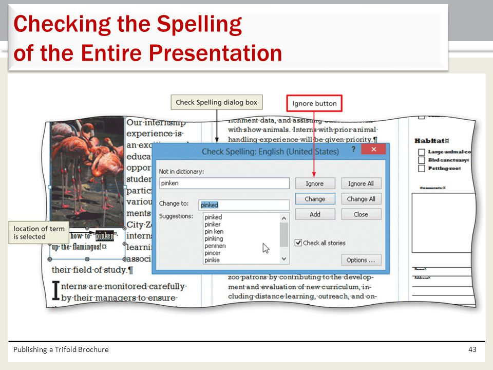 Checking the Spelling of the Entire Presentation