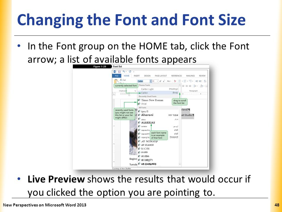 Changing the Font and Font Size