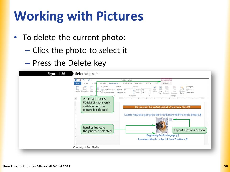 Working with Pictures To delete the current photo: