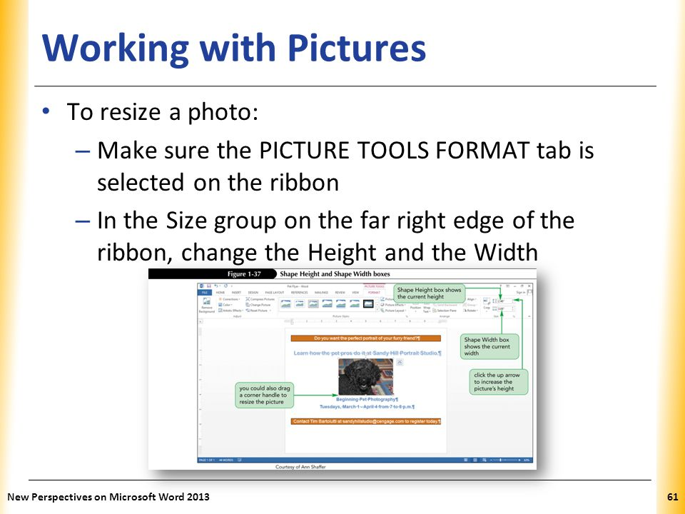 Working with Pictures To resize a photo: