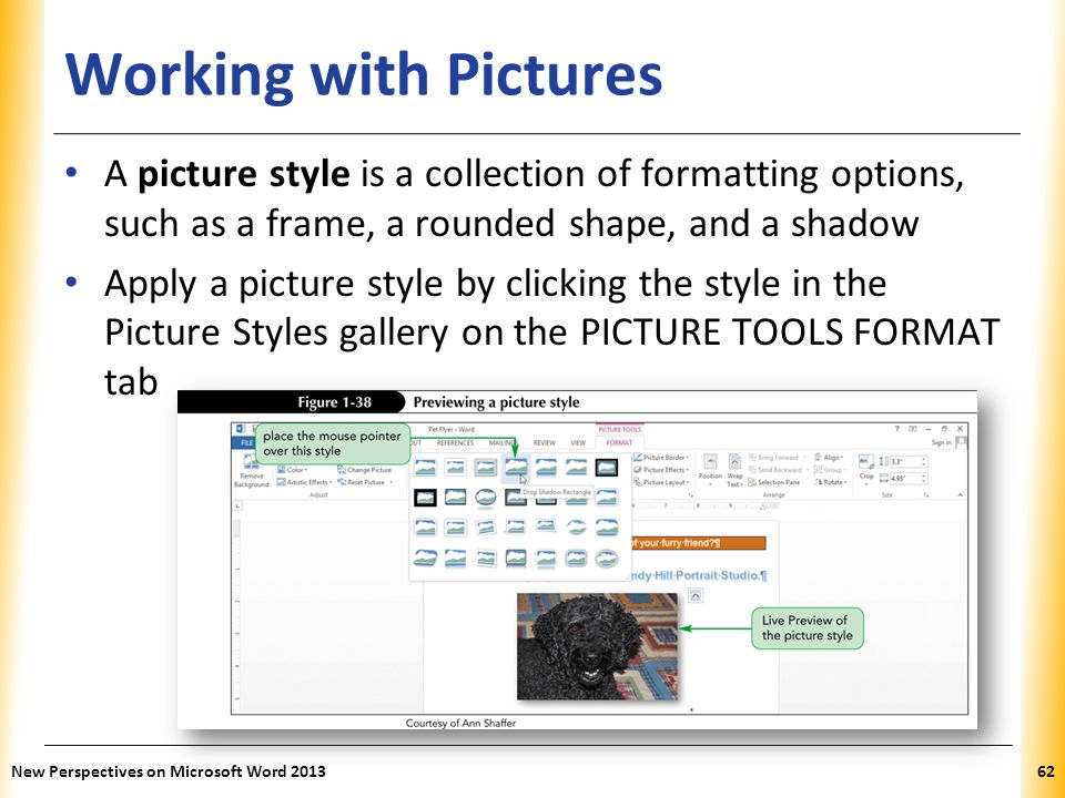 Working with Pictures A picture style is a collection of formatting options, such as a frame, a rounded shape, and a shadow.