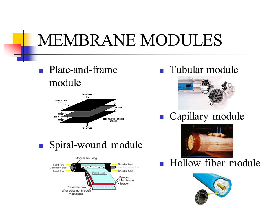 plate and frame membrane module pdf