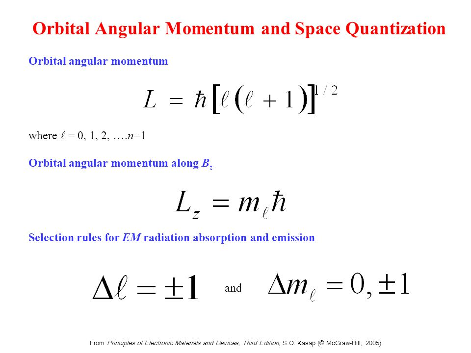 Spin angular momentum exhibits space