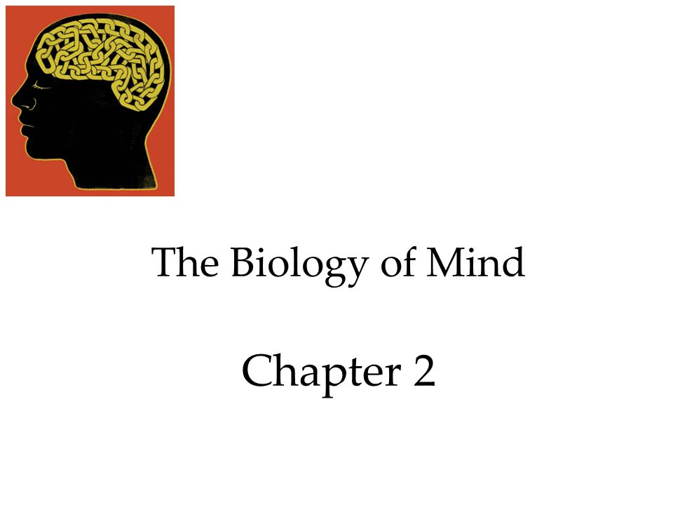 The Biology of Mind and Consciousness